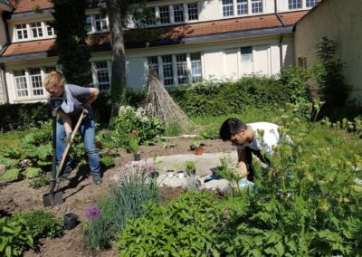 Gartenpflege_6